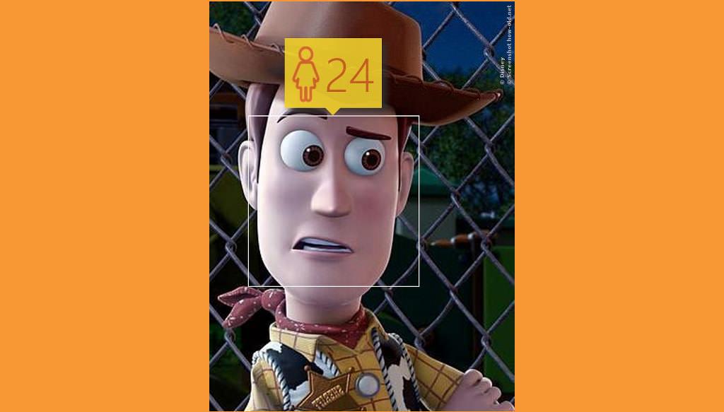 Cowboys aus Toystory sind nie zu alt zum Spielen!
