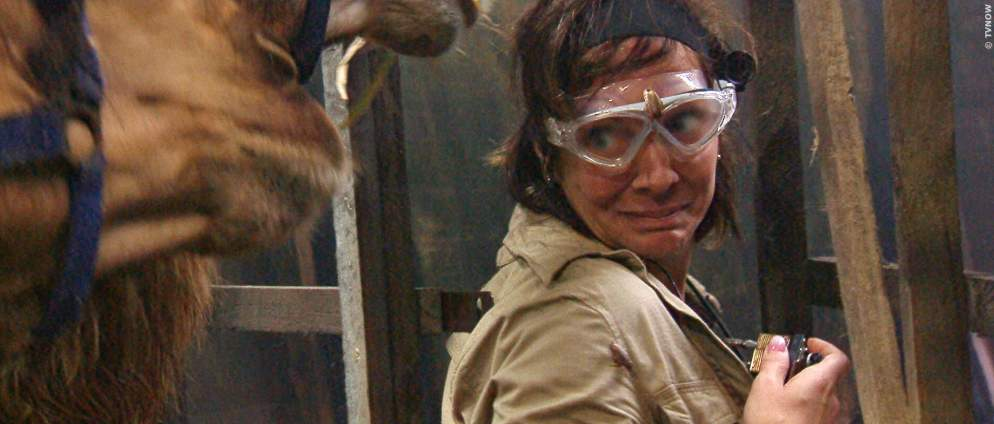 Dschungelcamp: Tag 3 - Streit um Wendler und Laura