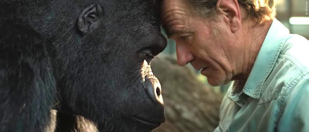Disney+ holt Bryan Cranston-Film vor den Kinos