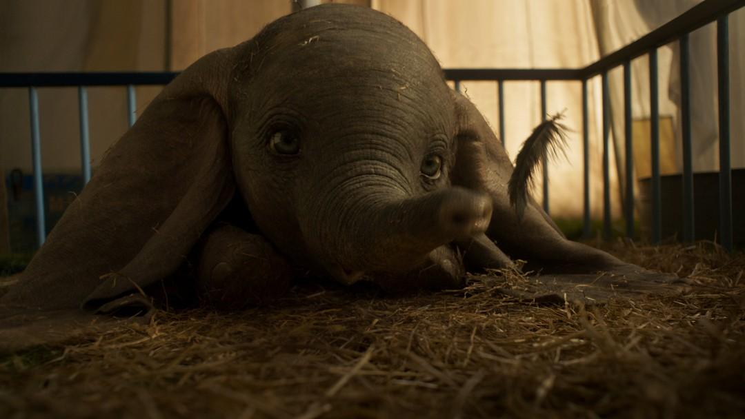 Dumbo: Neuer Trailer zum fliegenden Disney-Elefanten - Bild 1 von 11