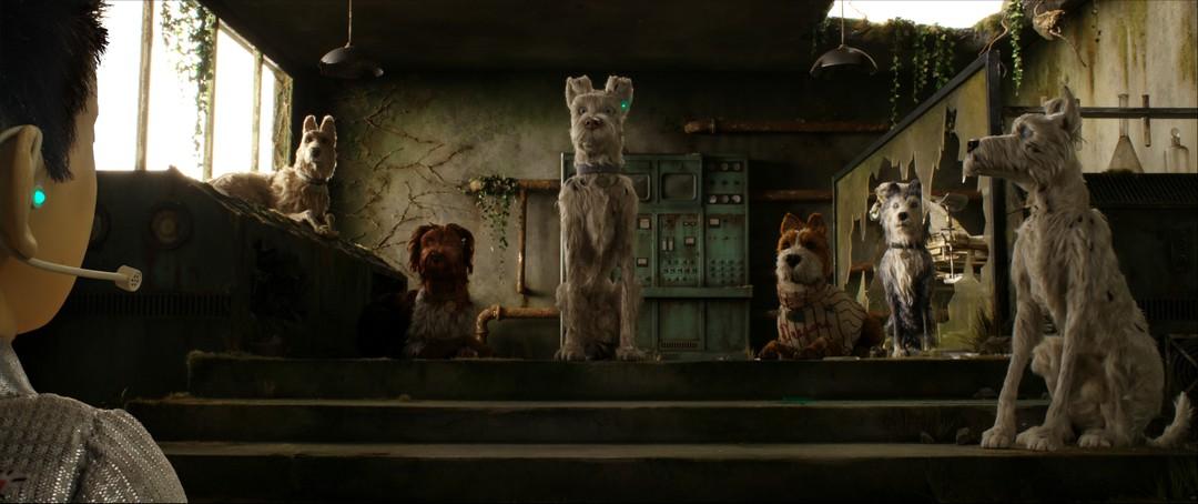 Isle Of Dogs Trailer - Ataris Reise - Bild 1 von 59
