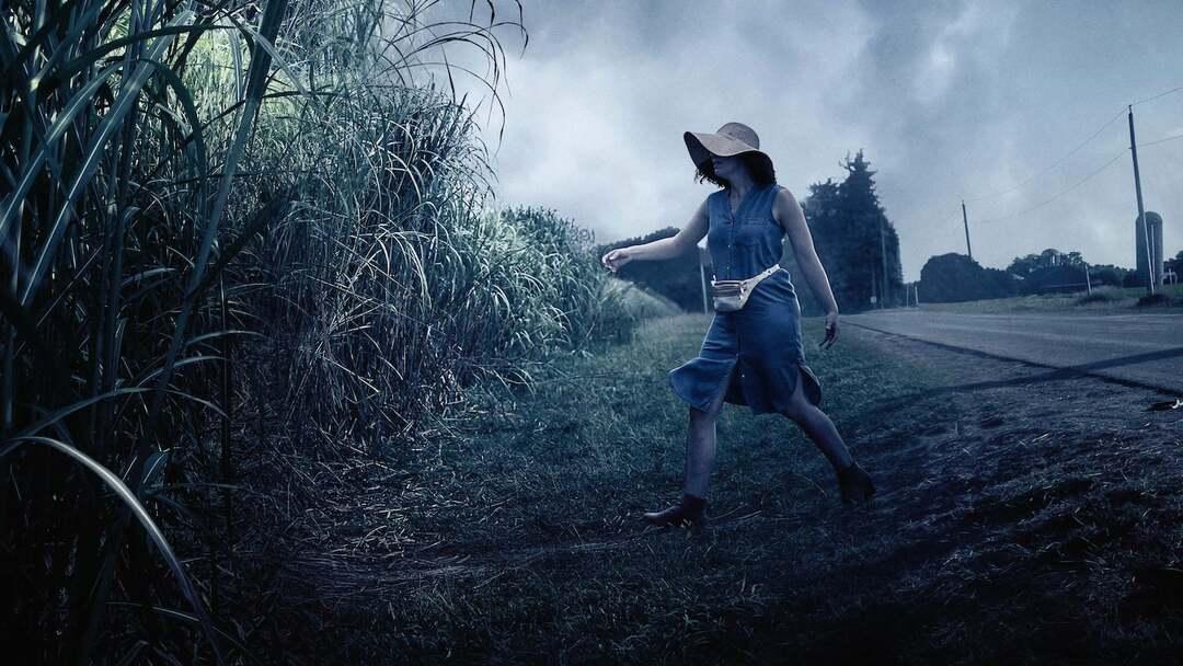 Im hohen Gras Trailer - Bild 1 von 2