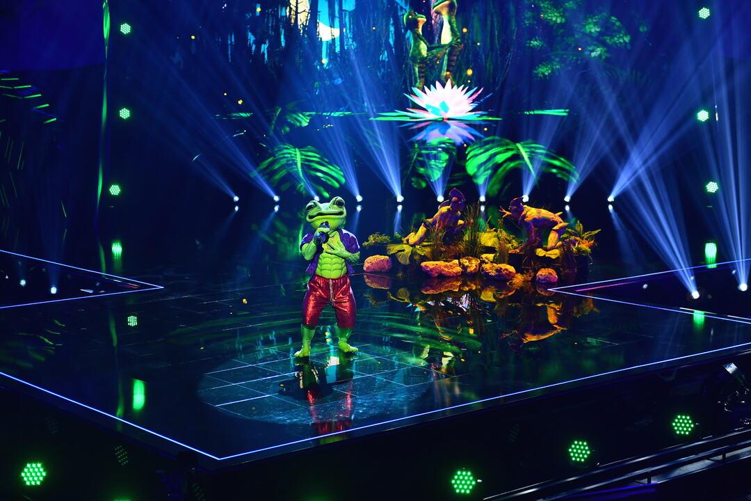 The Masked Singer: Erste Zuschauer boykottieren die Show - Bild 1 von 21