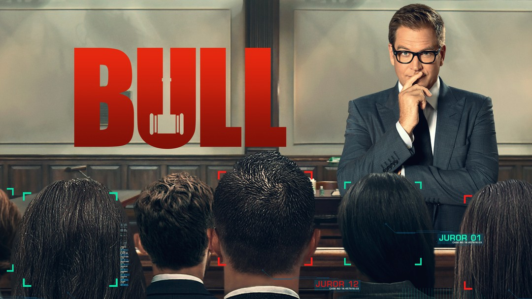 Bild zu Bull